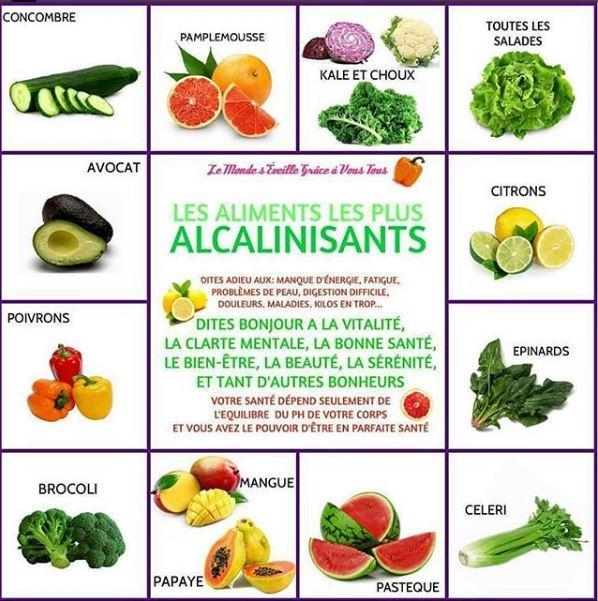 aliments-alcanilisants