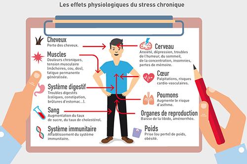 stress-impact-sur-lorganisme