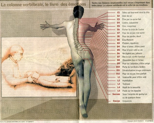 osteopathie-somato-emotionnelle-approche