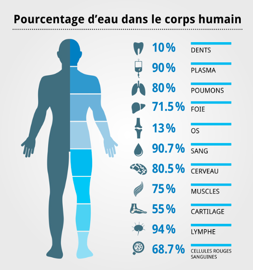 canicule-hydratation-corps